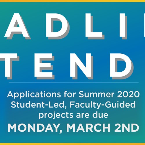 REI has EXTENDED the deadline for Summer 2020 Student-Led, Faculty-Guided project applications. Learn more about the projects and APPLY NOW!!!