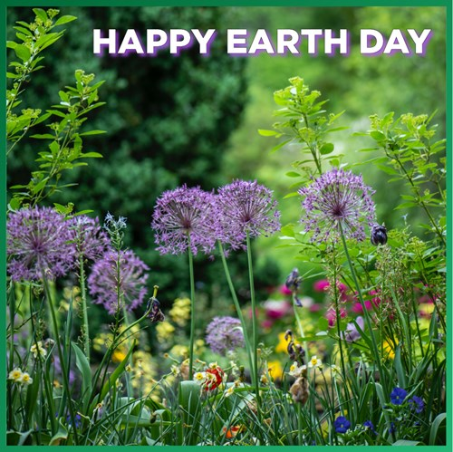 Happy Earth Day from MSU CCED! An abundance of our research focuses on sustainable practices on a local and state level, including MSU #Domicology and MSU REI. Learn more about our green research at our sites!